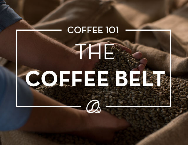 The Coffee Belt