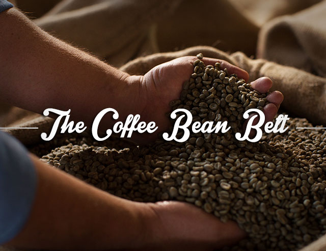 the-coffee-bean-belt