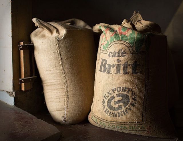 Coffee in burlap Cafe Britt coffee bags