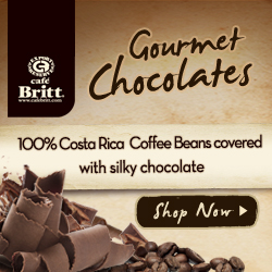 Chocolate Covered Coffee Beans 250x250