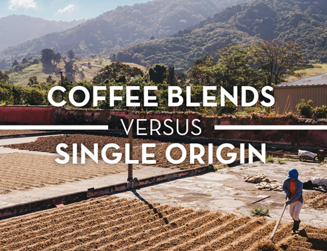 Blends versus Single origin