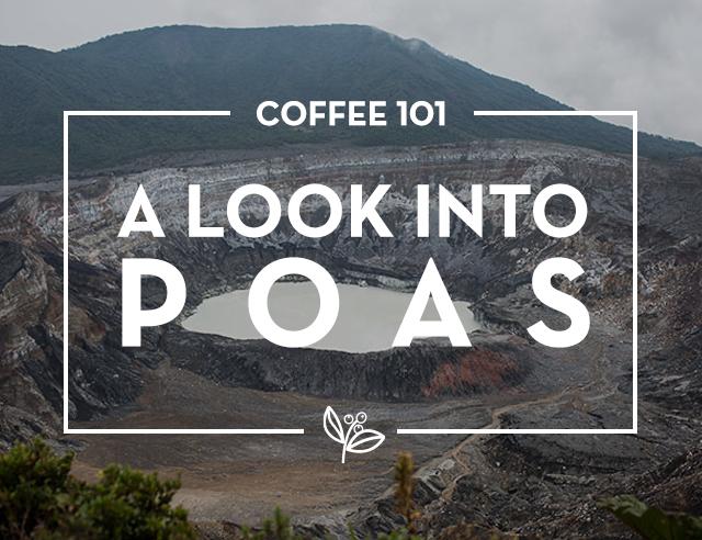 A look into Poas