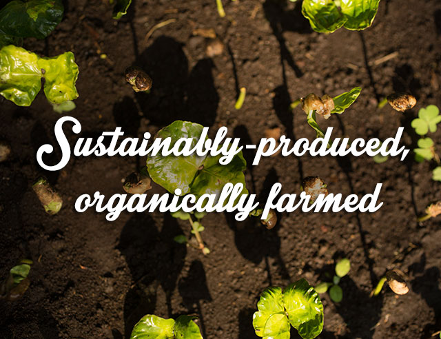 SUSTAINABLY-PRODUCED, ORGANICALLY FARMED