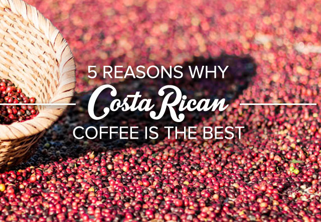 5 Reasons why Costa Rican coffee is the best