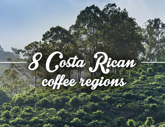 8 Costa Rican coffee regions