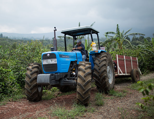 Tractor on a coffee plantation
