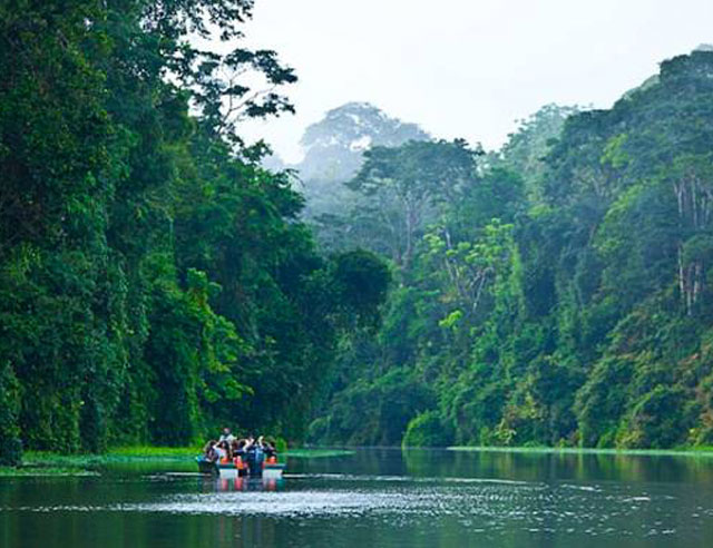 People in boat in tropical river