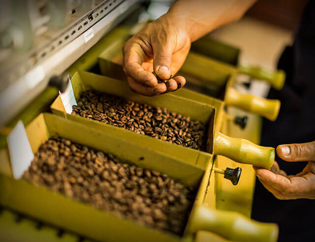 Person handling coffee from a roaster