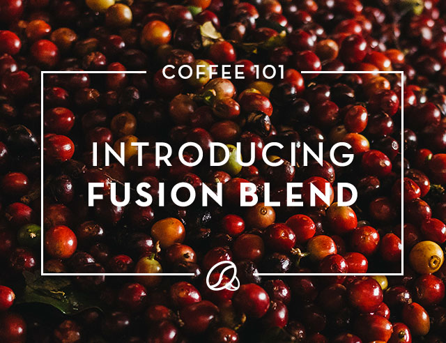 Coffee 101: Introducing Fusión Blend