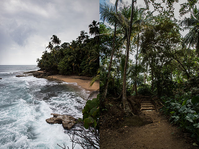 Coast and forest at Gandoca-Manzanillo Wildlife Refuge in Costa Rica