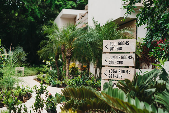 Outdoor signs at Gilded Iguana hotel