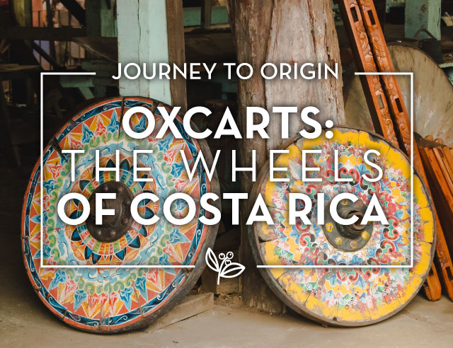 Oxcarts The Wheels of Costa Rica