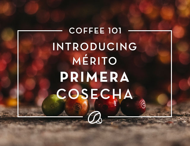 Introducing Mérito Primera Cosecha