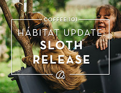 Coffee 101: Habitat Update - Sloth Release