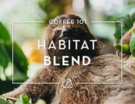 Coffee 101: Holiday Blend 2017