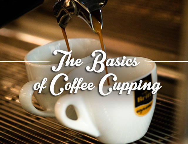 The Basics of Coffee Cupping