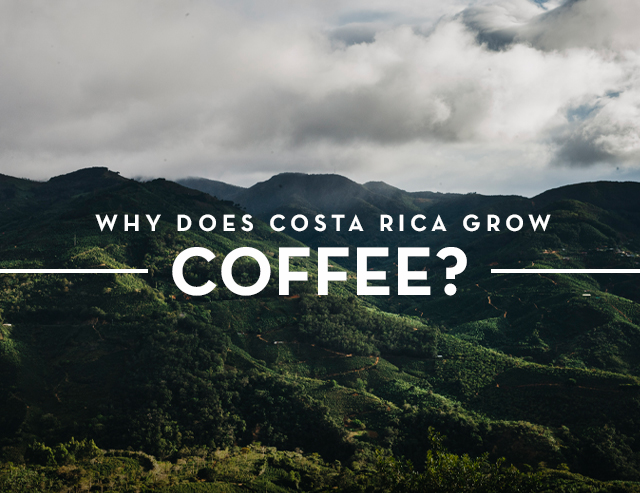 The Land of Coffee