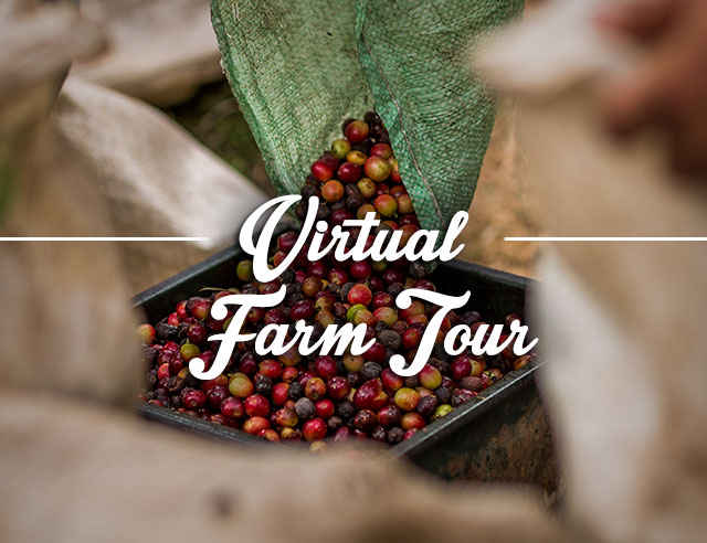 virtual-farm-tour
