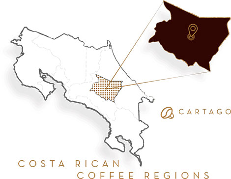 7-provincias-cartago-whole-bean