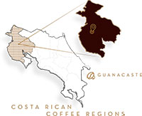 7-provincias-guanacaste-whole-bean