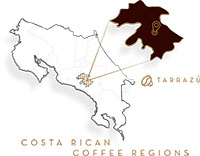 Costa-Rican-Tarrazu-Whole-Bean