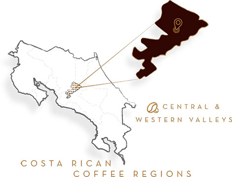 Costa Rican Dark Roast Gourmet Coffee